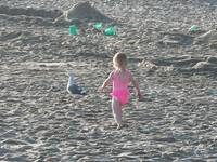 Baby girl chasing seagul on the beach