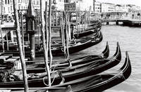 Gondolas on wait.