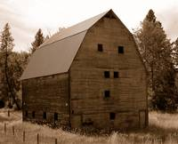 This Old Barn #1 Sepia