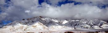 Christmas in Nature