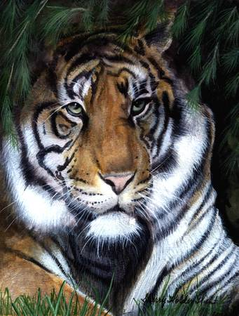 Tiger Painting by Sherry Holder Hunt