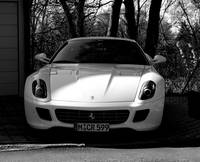 the 599 white ferrari.jpg