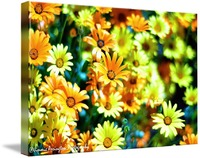 Cellophane Flowers Of Yellow And Green