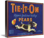 tieton girls 3 reviews of mighty tieton i have been reading about mighty tieton four years and finally had the opportunity to well done mighty tieton this big city girl.