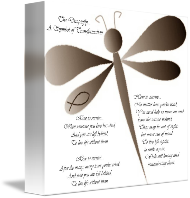 The Dragonfly A Symbol Of Transformation By Kdnaturals