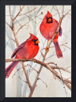 Cardinal Brothers by Sharon Morgio