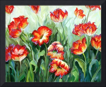 Red & White Parrot Tulips by Beth Charles