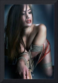 Tied asian model - Fine Art of Bondage (V3)