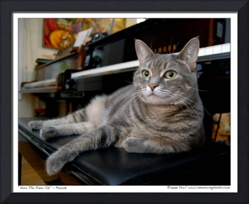Nora The Piano Cat™ - n0028