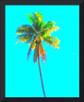 PALM TREE (FUNKY COLORIZATION)