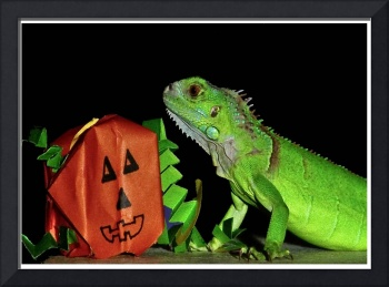 Green Iguana and Handcrafted Pumpkin