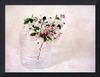 Apple Blossom Still Life