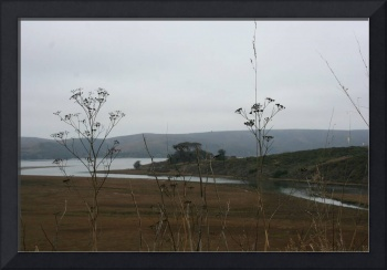 Estuary at Point Reyes