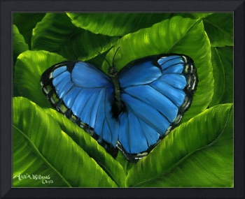 Blue Night Butterfly