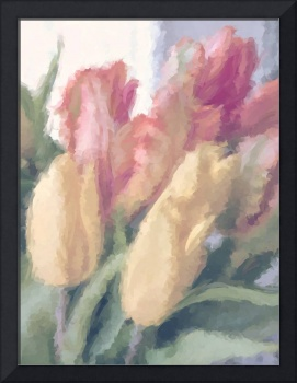 WARMTH OF SPRING TULIPS