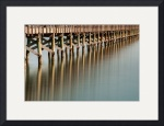Fulton Fishing Pier II (color) by Dave Wilson