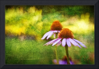 Cone Flowers and Hearts II