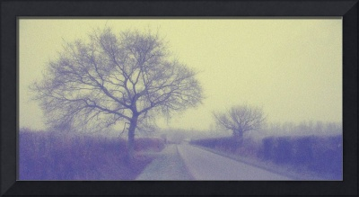 Tree with road