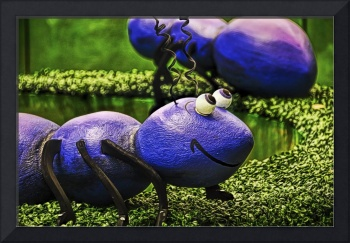 My Macro Insect