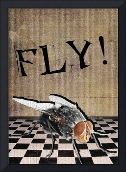 Insect Fly!