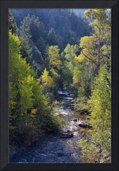 Colorado Left Hand Creek Autumn Scenic View