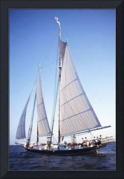 Pungy Schooner Lady Maryland Port Side Sail