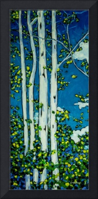 Summer Birch Trees II