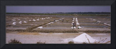 Agricultural workers working in a salt mine