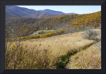 Overmountain Shelter and Appalachian Trail