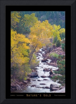 Rocky Mountain Golden Canyon Scenic View Poster P