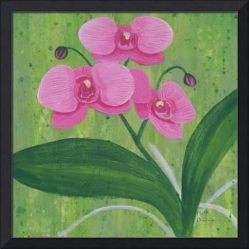 One Heart Orchids I