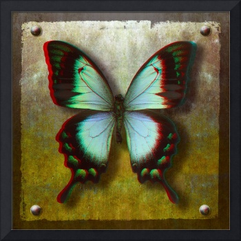 3D Anaglyph-Radiant Swallowtail Butterfly
