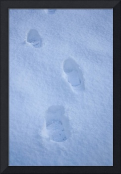 Foot Steps in the Snow
