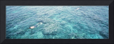 High angle view of two men snorkeling