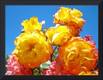 Rose Garden Floral art prints Blue Sky Landscape