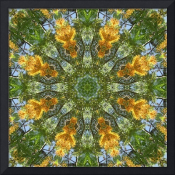 Yellow Tree Flower Kaleidoscope Art 6
