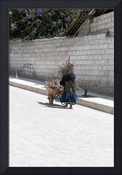 Woman Collecting Sticks for Cooking