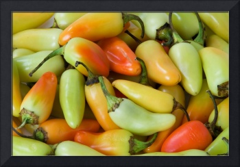Coloraful Peppers
