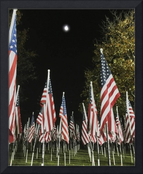 Veterans Day 2016 night IMG_2708 JPG 8x10 150%