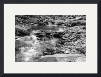 Conklin Gully II in B&W by D. Brent Walton