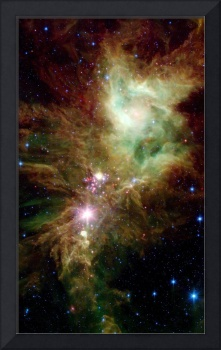 Newborn stars in the Christmas Tree cluster.
