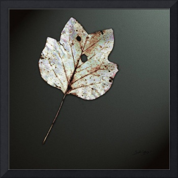 Autumn Leaf Modern Art by Ginette