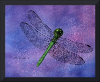Dragonfly on Purple