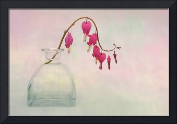 Dicentra in a Glass Vase 2