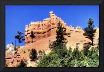 Red Canyon orton 01