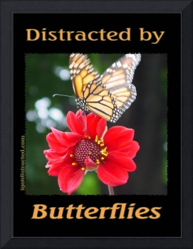 Distracted by Butterflies 04167