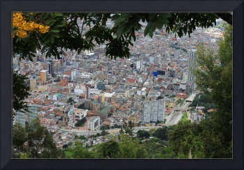 Modern Bogota through the trees