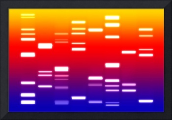 DNA Art Blue Red Yellow