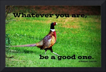 Be a Good One