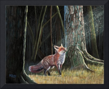 Red fox in forest